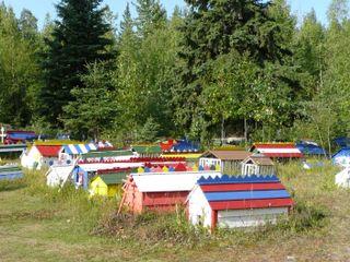 Alaska 2009 032