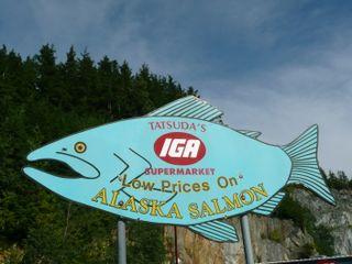 Alaska 2009 790